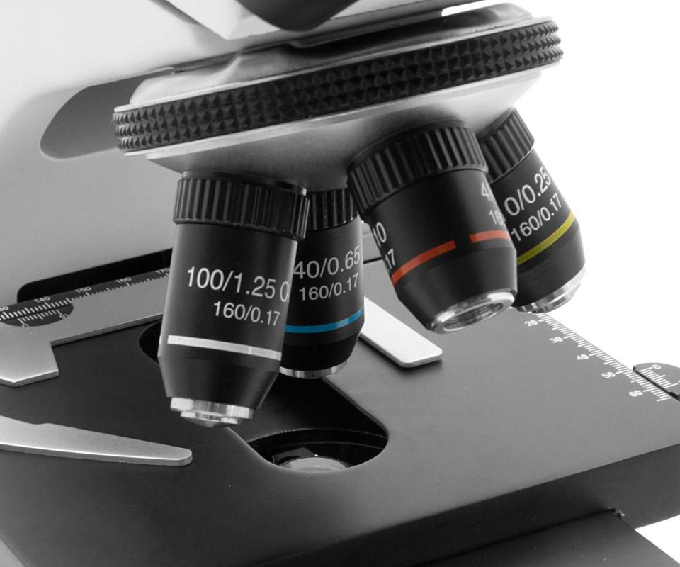 Mikroskop test und vergleich u a test vergleich check